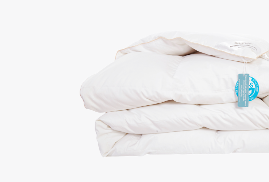 Image of Luxury All-Season White Down Comforter